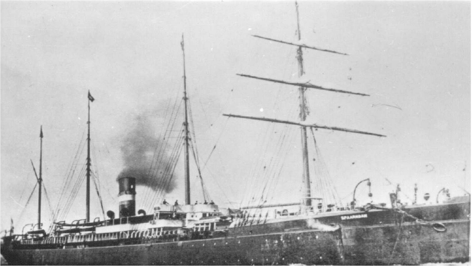 Ship Manifest (Spaarndam, 1895)